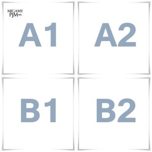 A1_A2_B1_B2
